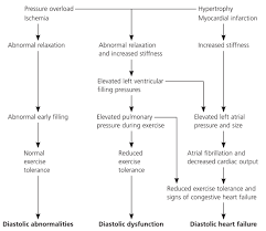 Pathophysiology Of Chf Diagnosis And Management Of Diastolic Dysfunction And Heart Failure