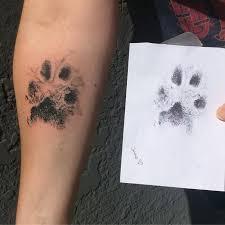 Pes Který Maluje Nekouše Grafické Kreslení