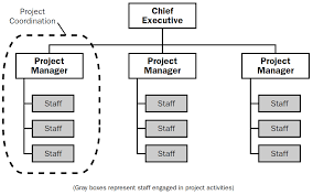 The 4 Types Of Project Organizational Structure