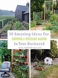 Backyard Raised Garden Designs 30 Amazing Ideas For Growing A Vegetable Garden In Your Backyard