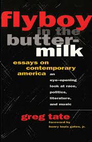 flyboy in the buttermilk essays on contemporary america book by  flyboy in the buttermilk essays on contemporary america 9781501136979 hr