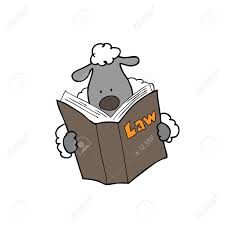 sheep reading law book cartoon stock vector 32185080