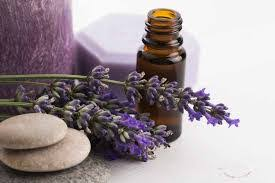 Image result for images of essential oils