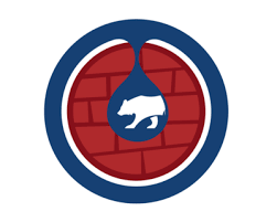 bleed cubbie blue a chicago cubs munity