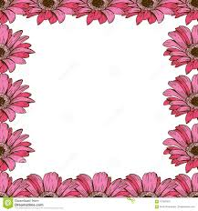 A Beautiful Floral Frame Of Pink Daisies Flower Design For