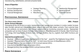 Professional Resume Writers In Delhi by Superb Writing Editing Tags  Executive Resume Writing