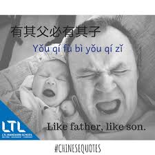 Chinese Baby Quotes Best Quotes For Your Life