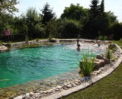 Schwimmteich Garten Google Suche Natural Pool Schwimmteich