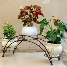 Cheap plant with purple flowers, Buy Quality stand retail directly from  China plant 7 Suppliers