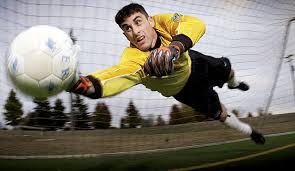 Image result for goalkeeper gloves public domain