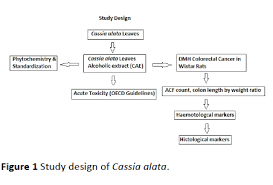 Pharmacological Screening Of Cassia Alata Leaves On
