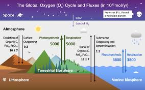 Photosynthesis Alphabet Chart Oxygen Cycle Wikipedia
