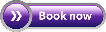 Image result for book now buttons