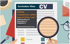 3 Types Of Cvs Their Advantages And Disadvantages Catherine S