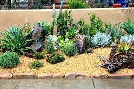 indoor rock garden decoration outdoor succulents indoor and succulent garden ideas mini rock indoor rock garden images