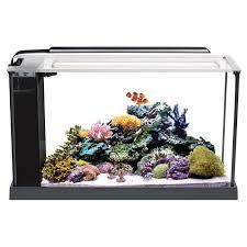 Fluval Sea Marine Reef 3 0 Spectrum Led Light Fixture Fluval Evo Saltwater Kits Nano Reef Tank Marine Aquarium