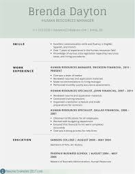 Resume Template On Microsoft Word 2007 036 Microsoftrd Resume Template Download Ideas How To Format