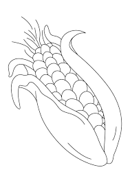 Small Picture Very sweet corn coloring pages Download Free Very sweet corn