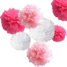 Hanging Paper Flower Balls 18pcs Tissue Hanging Paper Pom Poms Hmxpls Flower Ball Wedding Party Outdoor Decoration Premium Tissue Paper Pom Pom Flowers Craft Kit Pink White