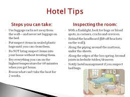 diy bed bug treatment uk lovely 7 best travel tips to prevent bed bugs images on