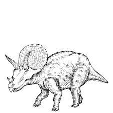 Imprimer Animaux Dinosaures Triceratops Num Ro 315291