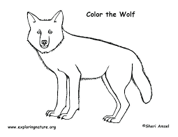 wolf coloring page cute baby wolf coloring pages to print