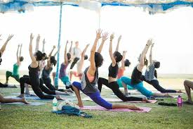 excellent hatha yoga ttc in goa india review of yoga teacher with noah mckenna aldona india tripadvisor