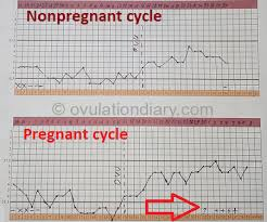 Body Temperature During Pregnancy Chart How To Calculate The Ovulation With Bbt Examples