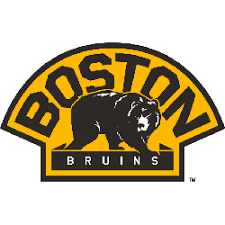 Boston Bruins Alternate Logo | Sports Logo History