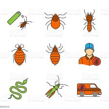 Pest Control Icons Stock Vektor Art und mehr Bilder von Auto - iStock