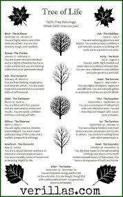 Celtic Tree Chart Celtic Astrology Tumblr
