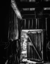 did you grow up in a barn prints black and white photograph of open barn door