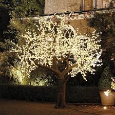 outdoor tree lighting ideas. Large Size Of Patio Lighting Ideas Led Outdoor Christmas Lights Tree T