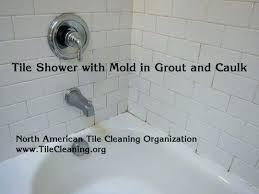 black mold in shower grout how