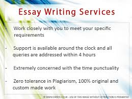 service essay writing help writing a college essay service essay writing