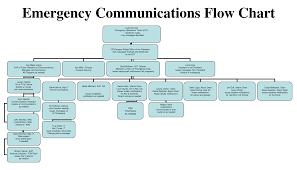 Organizational Communication Plan Term Paper Sample