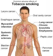 smoker s are liable to die young why not quit smoking why not quit smoking