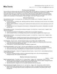 The Resume Clinic Resume For Your Job Application