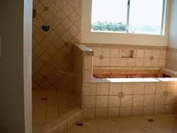 Download Small Bathroom Renovation Ideas Widaus Home Design - Bathroom shower renovation