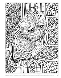 Awesome Owls Coloring Book By Fox