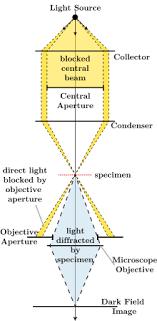 dark field microscopy dark field microscopy wikipedia