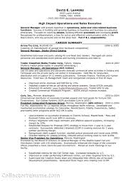 Resume For Sales Representative Sales Representative Resume Example