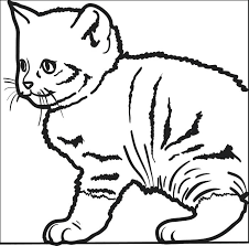 Christmas Cats Coloring Pages Cat Page Kitty Best Favorite Louring