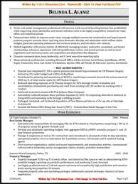 Professional Resume Writer Professional Resume Writers emberskyme 1