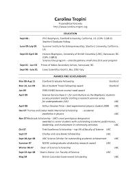 Resume Profile Header Examples Resume Header Examples Ckum Ca