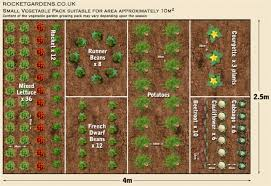 the great small garden layout