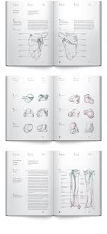 The New Design Concept For Anatomy Books With Pure Information