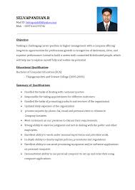 best resume format doc file cipanewsletter cover letter professional resume format