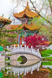the chinese garden zurich switzerland mother nature mother nature beauty mother