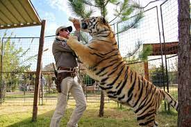 Donald Trump will Tiger King Joe Exotic ...